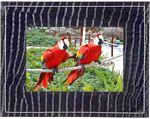 "Parrot PV7NITSAL 7"" Photo Viewer Bluetooth® Enabled Digital Photo Frame - Night Salamander"